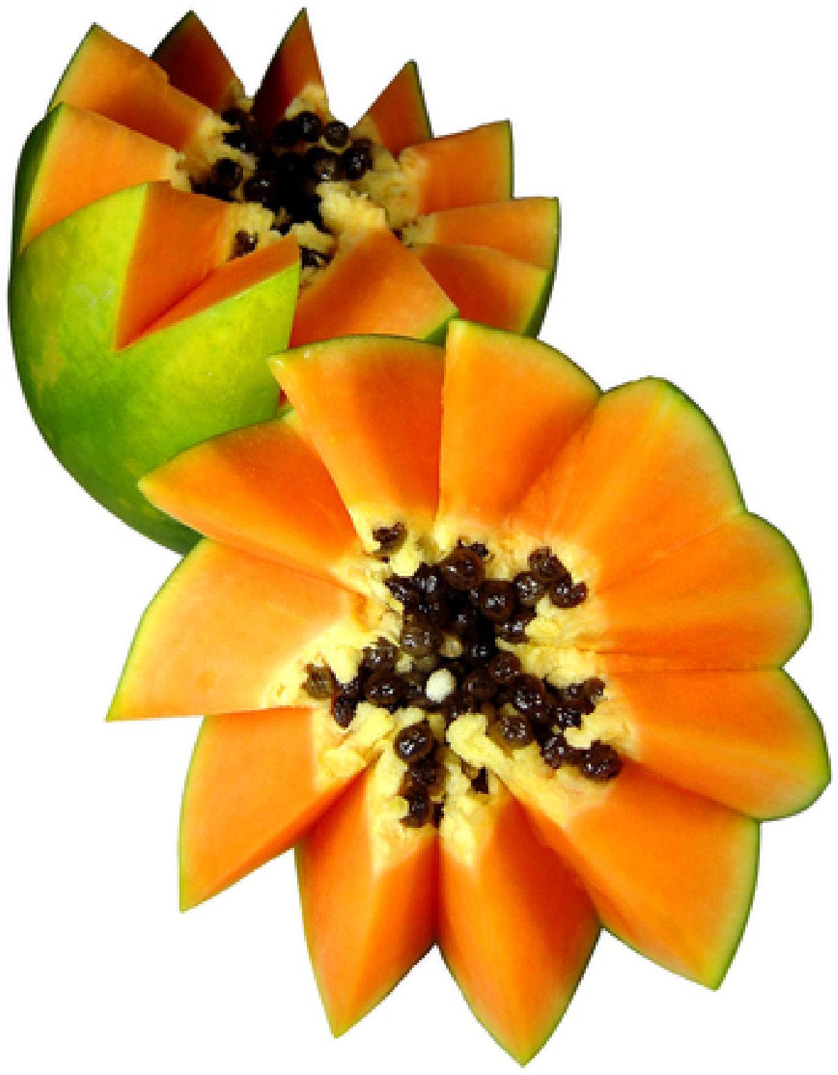 Beneficios de la papaya - Se pueden congelar las almejas crudas ...
